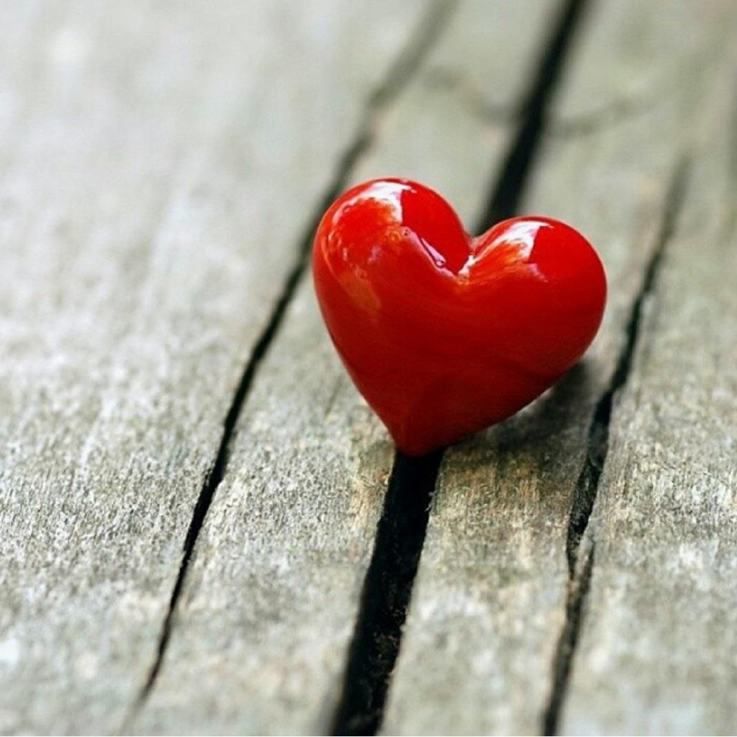 Днем, картинки с сердечками люблю тебя и ты моя единственная